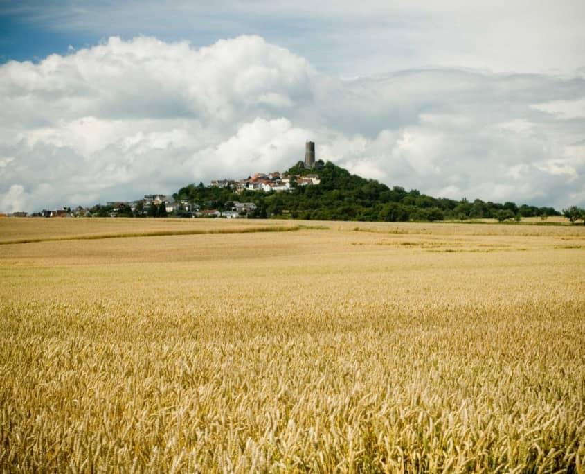 In der Umgebung von Gießens Hotel Altes Eishaus befinden sich zahlreiche Burgen. Hier lädt die Burg Gleiberg in Sichtweite des Hotels zu einem besonderen Ausflug ein.